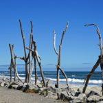 Hokitika Beach mit vielem Strandgut